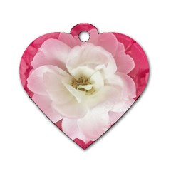 White Rose With Pink Leaves Around  Dog Tag Heart (one Sided)  by dflcprints