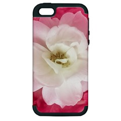 White Rose With Pink Leaves Around  Apple Iphone 5 Hardshell Case (pc+silicone) by dflcprints