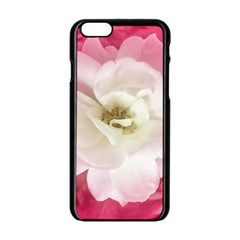 White Rose With Pink Leaves Around  Apple Iphone 6 Black Enamel Case by dflcprints