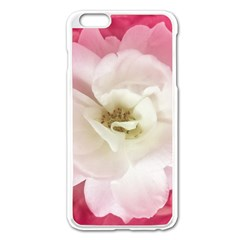 White Rose With Pink Leaves Around  Apple Iphone 6 Plus Enamel White Case by dflcprints