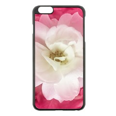 White Rose With Pink Leaves Around  Apple Iphone 6 Plus Black Enamel Case by dflcprints