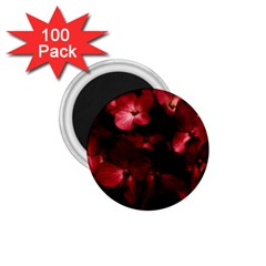 Red Flowers Bouquet In Black Background Photography 1 75  Button Magnet (100 Pack) by dflcprints