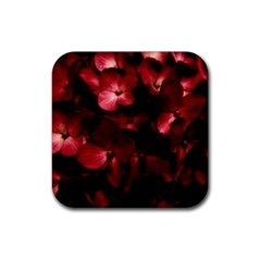 Red Flowers Bouquet In Black Background Photography Drink Coasters 4 Pack (square) by dflcprints