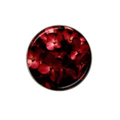 Red Flowers Bouquet In Black Background Photography Golf Ball Marker 4 Pack (for Hat Clip) by dflcprints