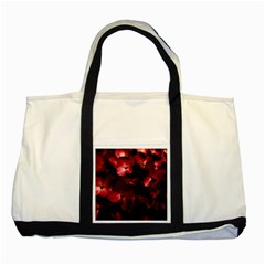 Red Flowers Bouquet In Black Background Photography Two Toned Tote Bag by dflcprints