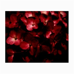 Red Flowers Bouquet In Black Background Photography Glasses Cloth (small, Two Sided) by dflcprints