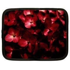 Red Flowers Bouquet In Black Background Photography Netbook Sleeve (xl) by dflcprints