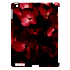 Red Flowers Bouquet In Black Background Photography Apple Ipad 3/4 Hardshell Case (compatible With Smart Cover) by dflcprints