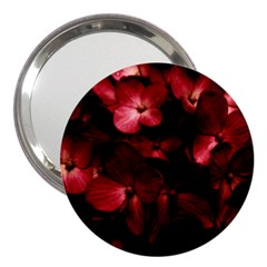 Red Flowers Bouquet In Black Background Photography 3  Handbag Mirror by dflcprints