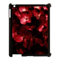 Red Flowers Bouquet In Black Background Photography Apple Ipad 3/4 Case (black) by dflcprints
