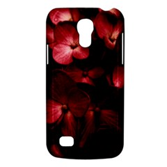 Red Flowers Bouquet In Black Background Photography Samsung Galaxy S4 Mini (gt I9190) Hardshell Case  by dflcprints