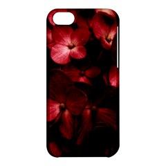 Red Flowers Bouquet In Black Background Photography Apple Iphone 5c Hardshell Case by dflcprints