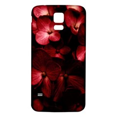Red Flowers Bouquet In Black Background Photography Samsung Galaxy S5 Back Case (white) by dflcprints