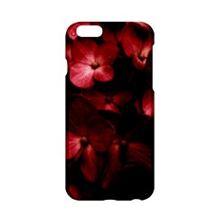 Red Flowers Bouquet In Black Background Photography Apple Iphone 6 Hardshell Case by dflcprints