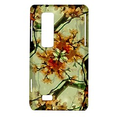 Floral Motif Print Pattern Collage LG Optimus 3D P920 / Thrill 4G P925 Hardshell Case  by dflcprints