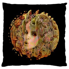 Organic Planet Standard Flano Cushion Case (two Sides) by icarusismartdesigns