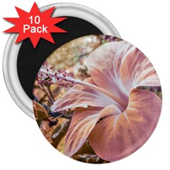 Fantasy Colors Hibiscus Flower Digital Photography 3  Button Magnet (10 Pack) by dflcprints