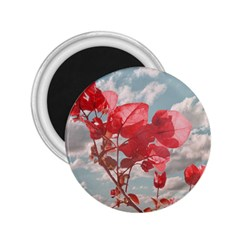 Flowers In The Sky 2 25  Button Magnet by dflcprints