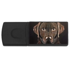 Chocolate Lab 4GB USB Flash Drive (Rectangle) by LabsandRetrievers