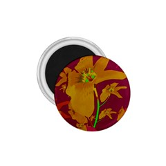 Tropical Hawaiian Style Lilies Collage 1 75  Button Magnet by dflcprints