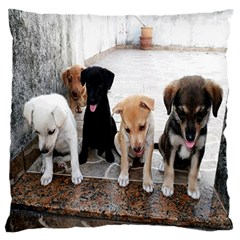 Puppy By Pamela Sue Goforth   Large Flano Cushion Case (two Sides)   Ukjb8oh187c0   Www Artscow Com Front