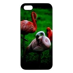 3pinkflamingos Iphone 5s Premium Hardshell Case by bloomingvinedesign