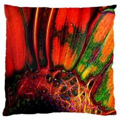 Abstract Of An Orange Gerbera Daisy Large Cushion Case (two Sided)  by bloomingvinedesign