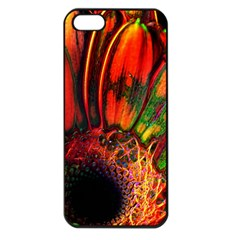 Abstract Of An Orange Gerbera Daisy Apple Iphone 5 Seamless Case (black) by bloomingvinedesign