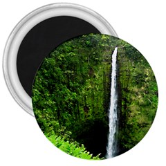 Akaka Falls 3  Button Magnet by bloomingvinedesign
