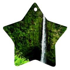 Akaka Falls Star Ornament (two Sides) by bloomingvinedesign