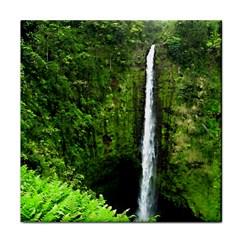 Akaka Falls Face Towel by bloomingvinedesign