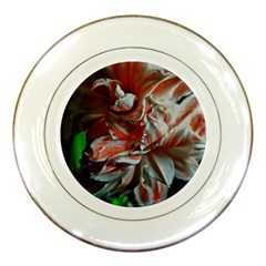 Amaryllis Double Bloom Porcelain Display Plate by bloomingvinedesign