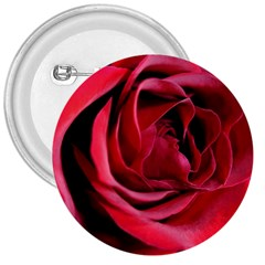 An Open Rose 3  Button by bloomingvinedesign