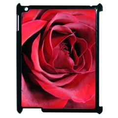 An Open Rose Apple Ipad 2 Case (black) by bloomingvinedesign