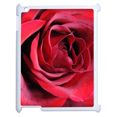 An Open Rose Apple Ipad 2 Case (white) by bloomingvinedesign