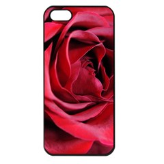 An Open Rose Apple Iphone 5 Seamless Case (black) by bloomingvinedesign