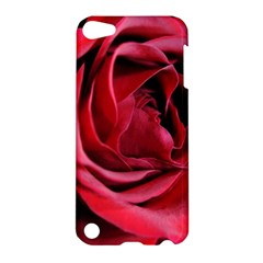 An Open Rose Apple Ipod Touch 5 Hardshell Case by bloomingvinedesign