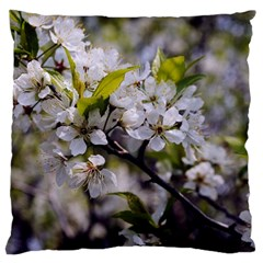 Apple Blossoms Large Cushion Case (two Sided)