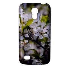 Apple Blossoms Samsung Galaxy S4 Mini (gt I9190) Hardshell Case  by bloomingvinedesign