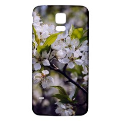 Apple Blossoms Samsung Galaxy S5 Back Case (White)