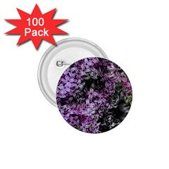 Lilacs Fade To Black And White 1 75  Button (100 Pack) by bloomingvinedesign