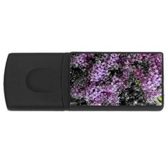 Lilacs Fade To Black And White 4gb Usb Flash Drive (rectangle) by bloomingvinedesign
