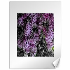 Lilacs Fade To Black And White Canvas 36  X 48  (unframed) by bloomingvinedesign