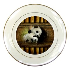 Panda Love Porcelain Display Plate by TheWowFactor