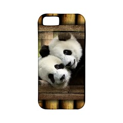 Panda Love Apple Iphone 5 Classic Hardshell Case (pc+silicone) by TheWowFactor