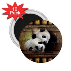 Panda Love 2 25  Button Magnet (10 Pack) by TheWowFactor