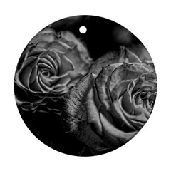 Black And White Tea Roses Round Ornament by bloomingvinedesign