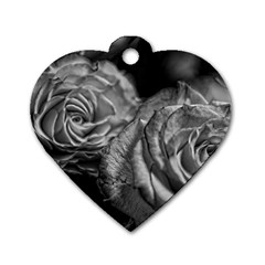 Black And White Tea Roses Dog Tag Heart (one Sided)  by bloomingvinedesign