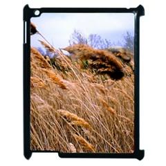 Blowing prairie Grass Apple iPad 2 Case (Black) by bloomingvinedesign