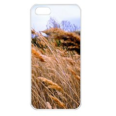 Blowing Prairie Grass Apple Iphone 5 Seamless Case (white) by bloomingvinedesign